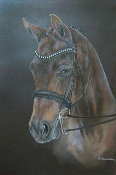 dressage horse pastel portrait