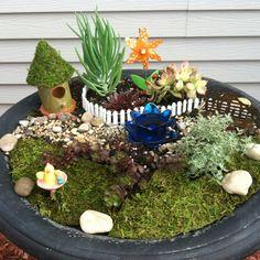 Fairy garden.  Needs fairies.