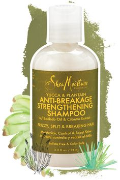 Yucca & Plantain Anti-Breakage Strengthening Shampoo - Trial & Travel Size A Better Way to Beautiful Since 1912.