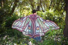 Image of Luna Moth long wings
