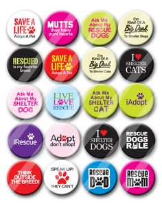 Rescue Animal Rescue Dog Rescue Cat Shelter Animals  Pin Back Button Party Favors  1.25 inch Buttons by PutOnYourPartyCap on Etsy https://www.etsy.com/listing/178683741/rescue-animal-rescue-dog-rescue-cat