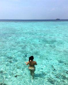 The Maldives Islands #Maldives Photo @almondcookie #nofilter #throwback #turquoise #honeymoon #omg #swimming #mood #bliss #ocean #paradiseisland #anotherdayinparadise #luxuryworldtraveler #vacation #beauty #luxurytravel #amazingblue