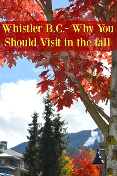 MAPLE LEOPARD: Whistler: 3 Reasons Why You Should Visit in Fall