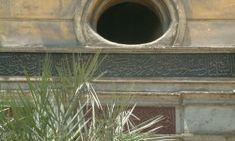 Abdullah Zühdü Efendi – Kur'an'la Ülfet Platformu Plants, Home Decor, Decoration Home, Room Decor, Plant, Home Interior Design, Planets, Home Decoration, Interior Design
