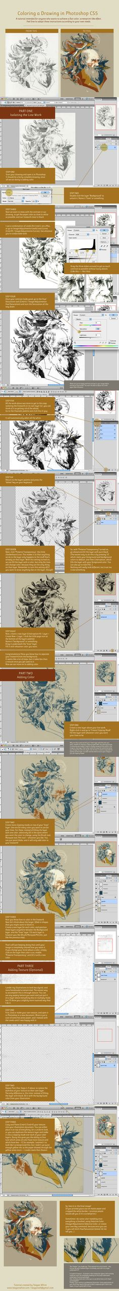 Coloring a Drawing in Photoshop CS5 by *teaganwhite on deviantART