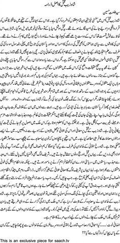 طلعت حسین نے شاہ زیب قتل کیس کے خوفناک حقائق سے پردہ اٹھا دیا۔۔۔۔۔ مزید پڑھیں