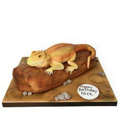 A bearded dragon cake?!