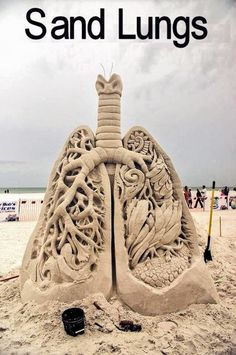 Anatomic Sand Sculpture -  Sand lungs - Amazing piece of art and science