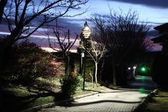 Land Scape, Industrial, Lighting, Plants, Design, Industrial Music, Lights, Plant
