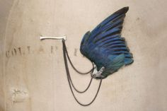 julia deville - taxidermy brooch (kingfisher wing).