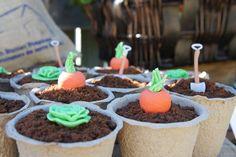 Nature Lover Guest Dessert Feature   Amy Atlas Events