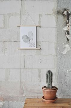 Inspiration for your home   Botanic prints for plant lovers