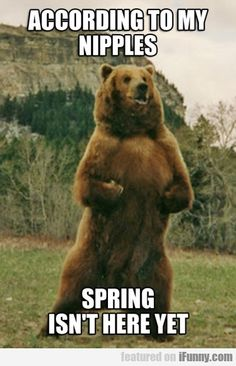 spring isn't here yet