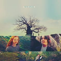 Severus Snape & Lily Evans images You're special wallpaper and ...