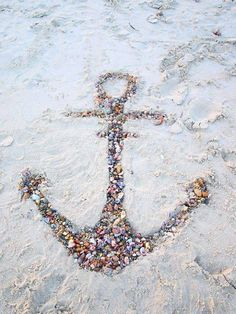 Seashell anchor