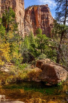 There are so many things to do in Zion National Park, but I've narrowed it down to a short list of things you really can't miss. I've also included a bunch of helpful information to help you navigate through Zion and make the most of your time. Have a great adventure!