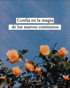 Motivational Phrases, Inspirational Quotes, True Quotes, Words Quotes, Pretty Quotes, Love Phrases, Tumblr Quotes, Inspiring Quotes Tumblr, Flower Quotes