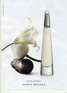 flores blancas perfume