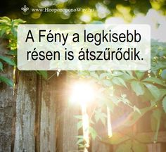 Hálát adok a mai napért. A Fény a legkisebb résen is átszűrődik. Ha kitárod a szíved, akkor átjárja tested és lelked. A Fény sebességével. Így szeretlek, Élet!  ⚜ Ho'oponoponoWay Magyarország ⚜ www.HooponoponoWay.hu