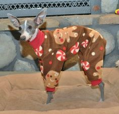 Gingerbread Man Dog Pajamas by RebelWag on Etsy