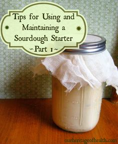 tips for using and maintaining a sourdough starter (part 1)