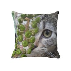 Two Kittens, One Pillow -Cat Lovers Throw Pillow from Zazzle.com    Two Kittens, One Pillow -Cat Lovers Throw Pillow  Be the envy of the Crazy Cat Lady Society with this Beautiful 2 sided -2 Kittened Throw Pillow With an adorable Tuxedo kitten on one side and a cute Tiger Kitten on the other. Hand made at American Mojo by Single Mothers.