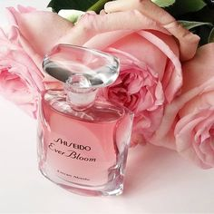 Shiseido Ever Bloom Extrait Absolu, 2016 Perfume Chanel, Musk Perfume, Perfume Scents, Perfume And Cologne, Cosmetics & Perfume, Perfume Oils, Amazing Grace Perfume, Deco Rose, Perfume Packaging