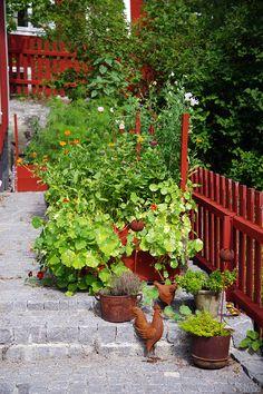 Vaxholm: husinspiration med torn och snickarglädje - www.aliciasivert.se Future, Garden, Plants, Future Tense, Garten, Lawn And Garden, Gardens, Plant, Gardening