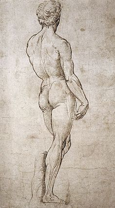 Michaelangelo's David by Raphael