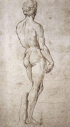 Michaelangelo's David by Raphael