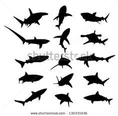shark tatoo..http://www.shutterstock.com/pic.mhtml?id=130331936