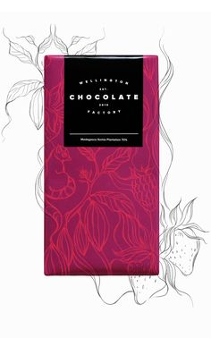 Three illustrations for three different chocolate flavours for the Wellington Chocolate Factory. Salted Caramel, Madagascar & Hazelnut.Branding by Inject Design.