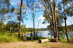 Queensland's national parks and forests offer a striking collection of mountain biking and cycling opportunities that showcase the state's diverse landscape. Mountain Biking, Golf Courses, Cycling, National Parks, To Go, Environment, Backyard, Bike, Adventure