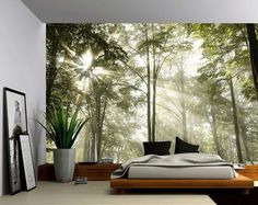 Forest Tree Rays of Light - Large Wall Mural, Self-adhesive Vinyl Wallpaper, Peel & Stick fabric wall decal