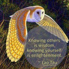 Be enlightened http://www.loapower.net/a-workshop-of-new-experience-and-knowledge/