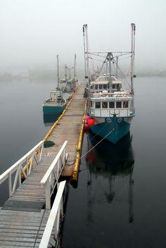 """Newfoundland Canada   / Photo """"docked"""" by Andrzej Pradzynski"""