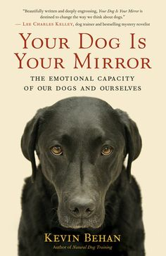 Your Dog Is Your Mirror by Kevin Behan Founder of Natural Dog Training