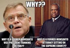 This is the reason why we do not have GMO labeling in the United States. We have a former vice president of Monsanto running the FDA and we have a former Monsanto lawyer sitting on the Supreme Court who refuses to recuse himself from any Monsanto cases. Bernie Sanders, Think, New World Order, Ms Gs, Supreme Court, Way Of Life, Life Thoughts, We The People, Evil People