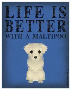 Life is Better with a Maltipoo Art Print 11x14 - Custom Dog Print. $29.00, via Etsy.