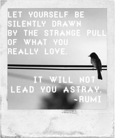 """let yourself be silently drawn by the strange pull of what you really love. It will not lead you astray."" - rumi #quote poem"