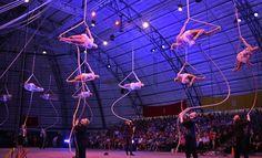 Sarasota's Sailor Circus 2015 Holiday Show | Photo Galleries | HeraldTribune.com