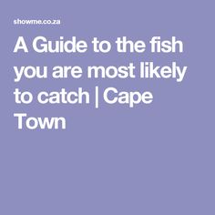 A Guide to the fish you are most likely to catch | Cape Town