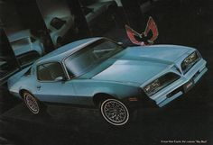 pontiac firebird skybird 1978 Maintenance/restoration of old/vintage vehicles: the material for new cogs/casters/gears/pads could be cast polyamide which I (Cast polyamide) can produce. My contact: tatjana.alic@windowslive.com