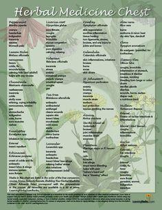 Herbal Medicine Chest Chart