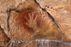 Let's Stop Assuming The Early Cave Painters Were Dudes.  Your quick guide to feminist archaeology.