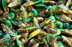 New Zealand foods - green-lipped mussels