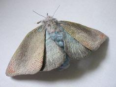 fabric moth, yumi okita