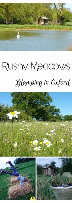 Rushy Meadows, Oxford.  A review of the family friendly camping and glamping site Rushy Meadows, near Oxford.  Part of Canopy & Stars.  Rural shepherds' huts, cabins and a lake.