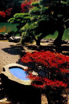 japanese garden #CustomHomeBuildersinHouston