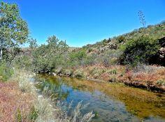 Tortilla Creek from Peter's Trail near Tortilla Well